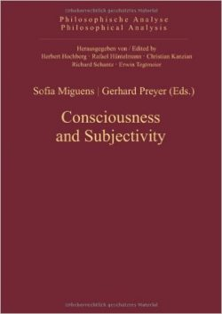 Consciousness and Subjectivity